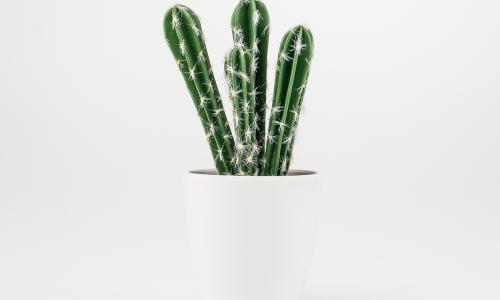 Planta artificial JOM 43157