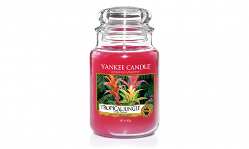 Vela jarro YANKKE CANDLE 1577809 TROPICAL JUNGLE