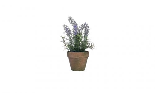 Vaso planta lavanda JOM 43151