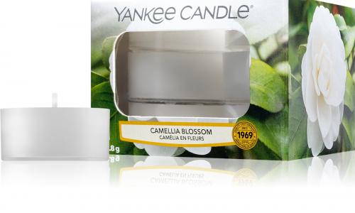 Caixa 12 tealights YANKKE CANDLE CAMELLIA BLOSSON YK1651498E