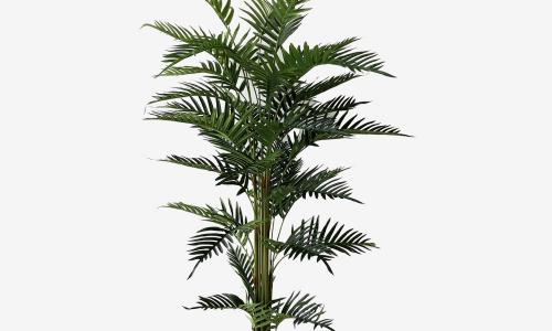 Vaso palmeira JOM 0477600000202