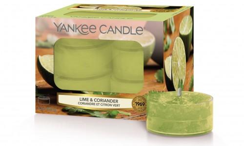 Caixa 12 velas tealights YANKKE LIME & CORIANDER YK1629274E